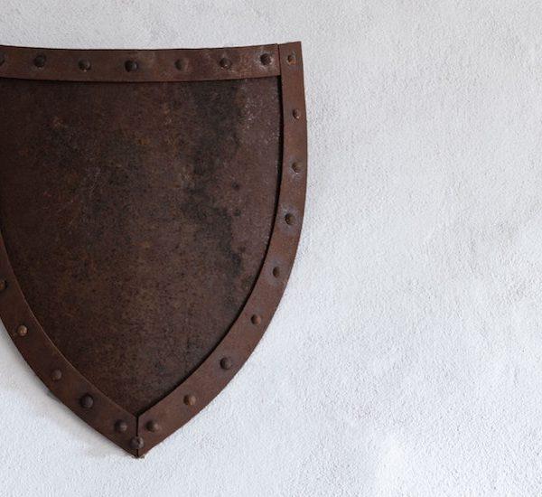 No perforéis nuestro escudo de seguridad digital Thumbnail